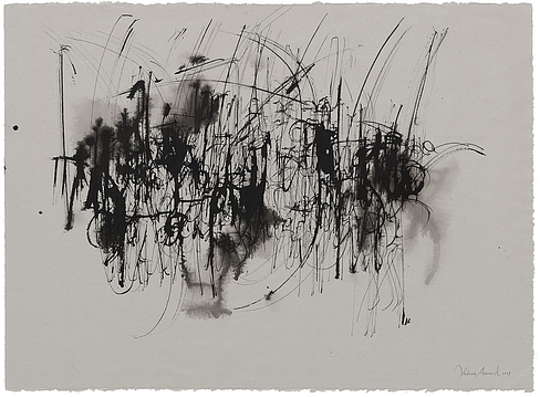 the berlin calligraphy collection  yukimi annand